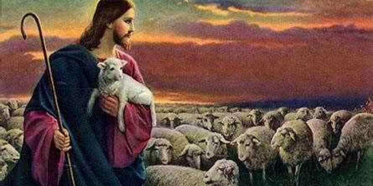 Yo soy el que cura a las ovejas enfermas